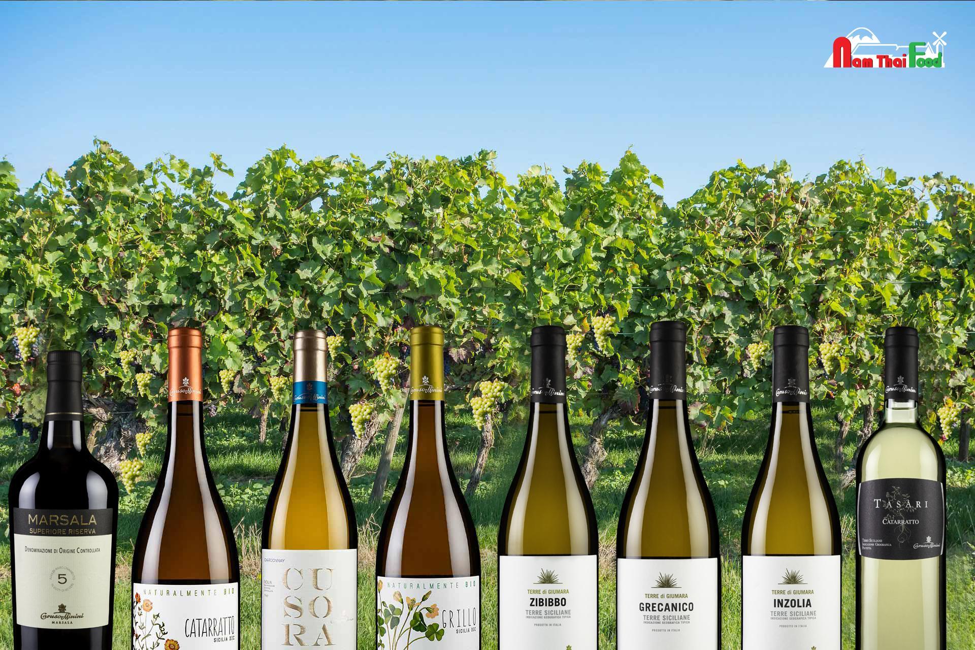 Rượu vang trắng - Italian Wine